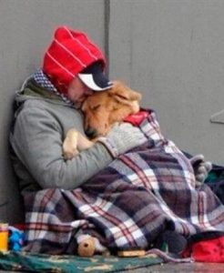 thumb_2_homeless-with-dog-600